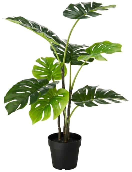 FEJKA Artificial Potted Plant, Monstera