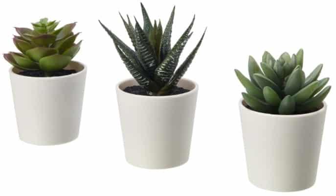 FEJKA Artificial Potted Plant with Pot, Succulent