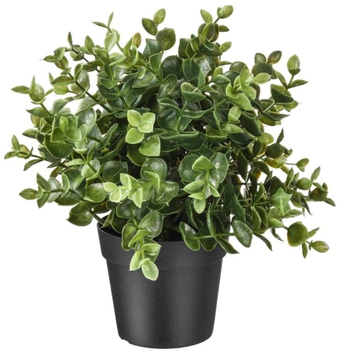 FEJKA Potted Plant, Oregano